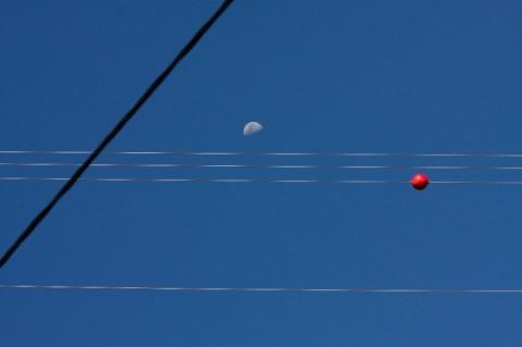 Mond & Co.