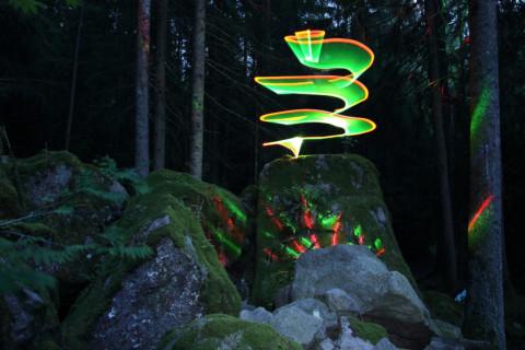 Geheime Lichter im Wald